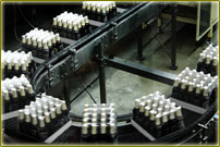 Conveyor belt for bottles